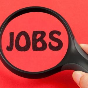 W tych zawodach bez problemu znajdziesz pracę