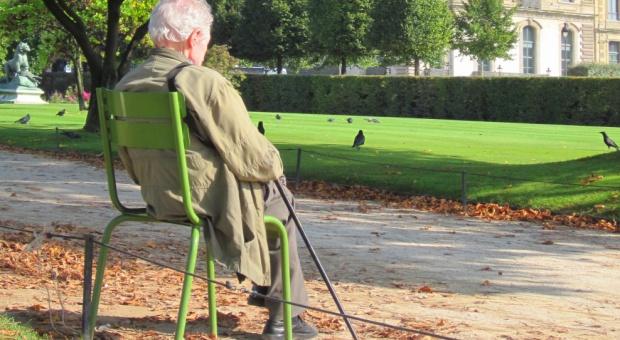 OPZZ chce powrotu do zdefiniowanych emerytur