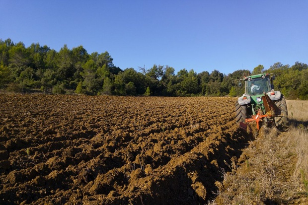 Minimalne wynagrodzenie: PiP skontroluje też zatrudnienie w rolnictwie