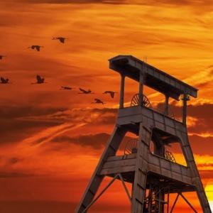 Co z przyszłością kopalni Sośnica?