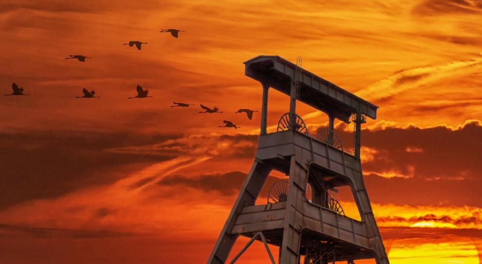 Co z przyszłością kopalni Sośnica? Decyzja w drugim półroczu 2018 r.