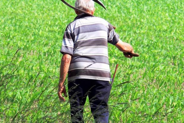 Kiedy rolnik może przejść na emeryturę?