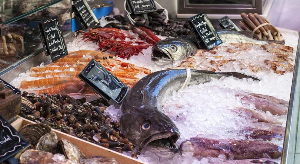 Ta branża potrzebuje targów jak ryba wody