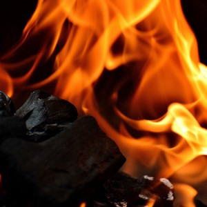 Rząd broni węgla