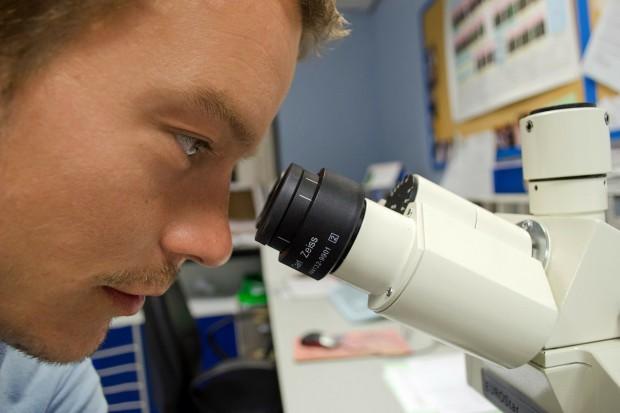 Blisko 700 naukowców przyjechało do pracy w Polsce dzięki programowi MSCA