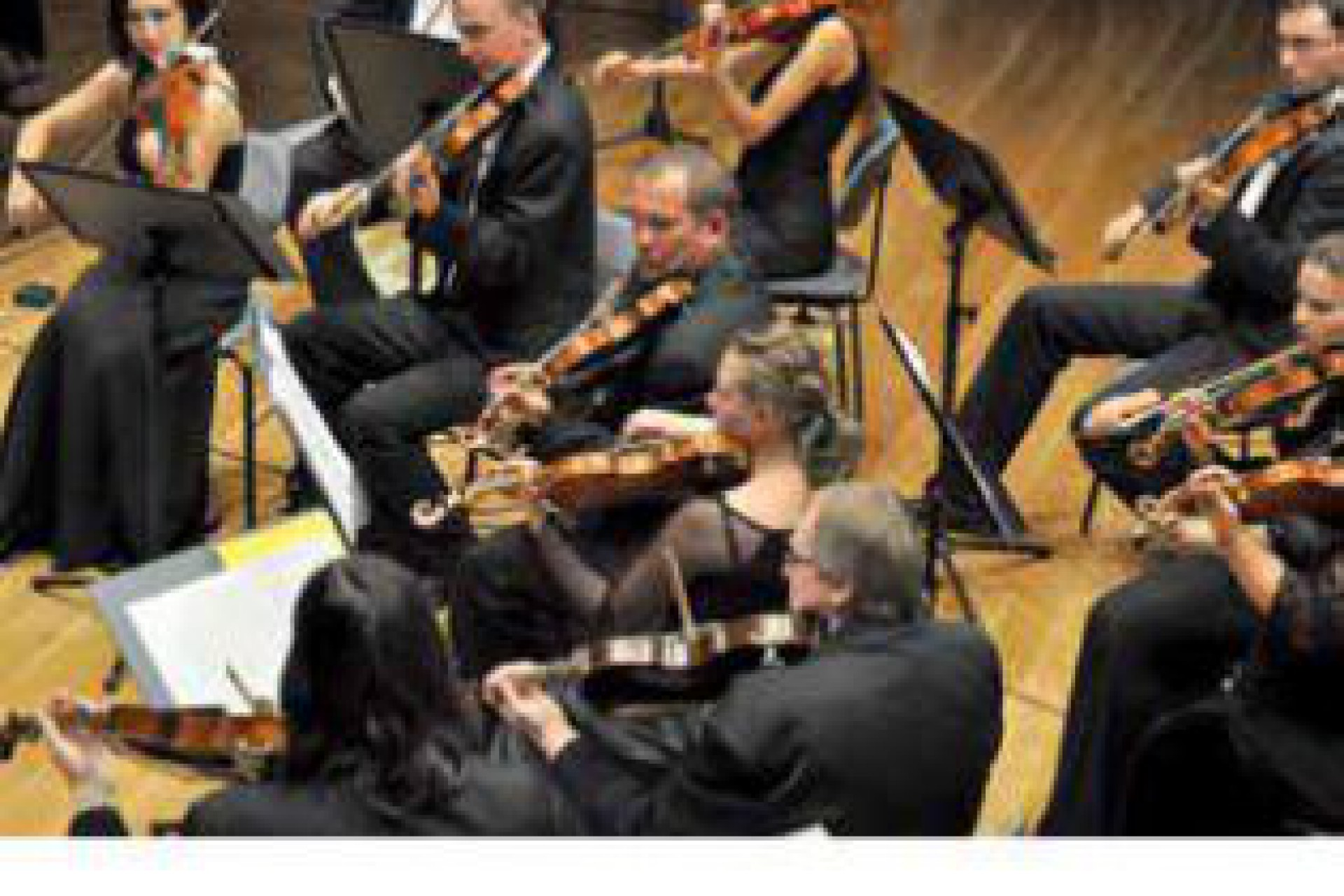 Radom szuka dyrektora Orkiestry Kameralnej