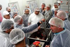 Kiedy powstanie Państwowa Inspekcja Bezpieczeństwa Żywności? Ewa Lech tłumaczy