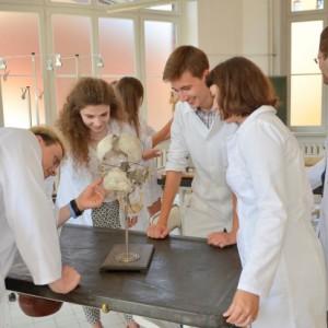 Łódzki uniwersytet medyczny przyciąga zagranicznych studentów