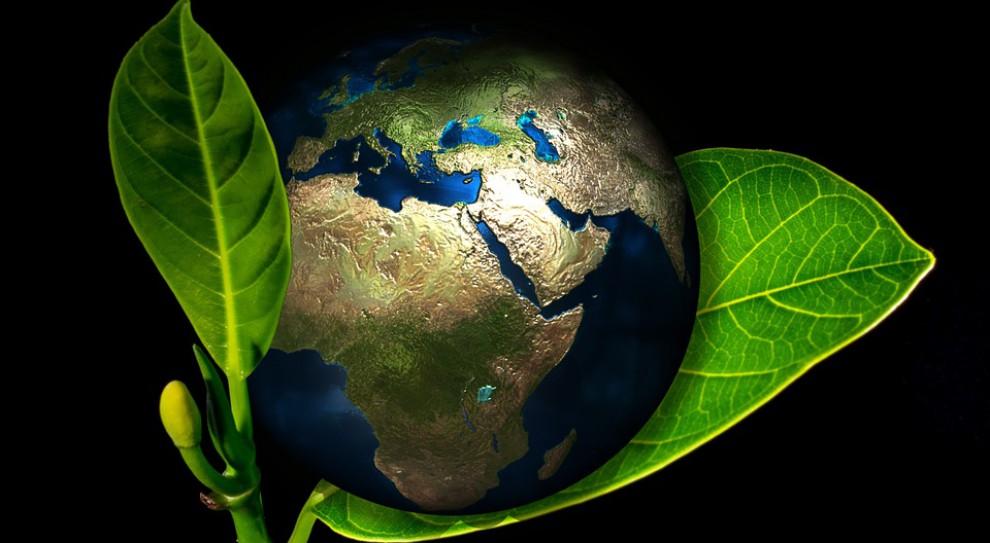 Ochrona środowiska: 9 regionów Polski wystartowało o wsparcie Eneris. Wiemy, kto dostanie wsparcie