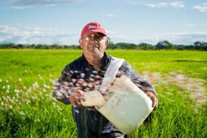 Rząd pracuje nad rozwiązaniami dotyczącymi pracy sezonowej