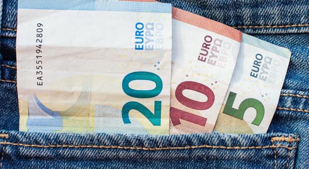 Na płace w euro jeszcze poczekamy. Ale czy warto na to czekać?