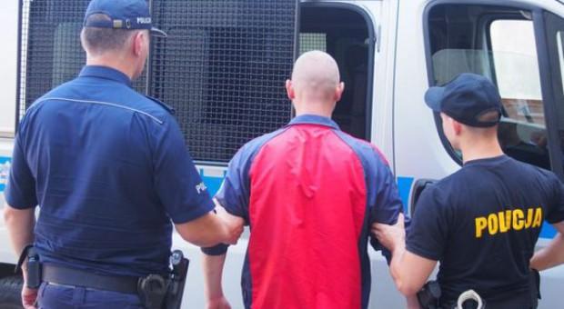 Policjanci mają pomocników do łapania przestępców