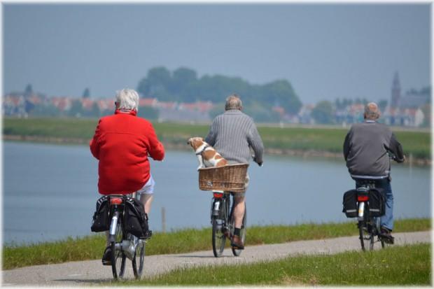 Nowoczesna włączy się w prace nad reformą systemu emerytalnego