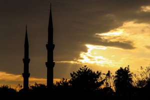 PAIH oferuje wsparcie dla przedsiębiorców na tureckim rynku