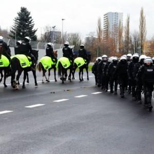 Konie pomagają policji