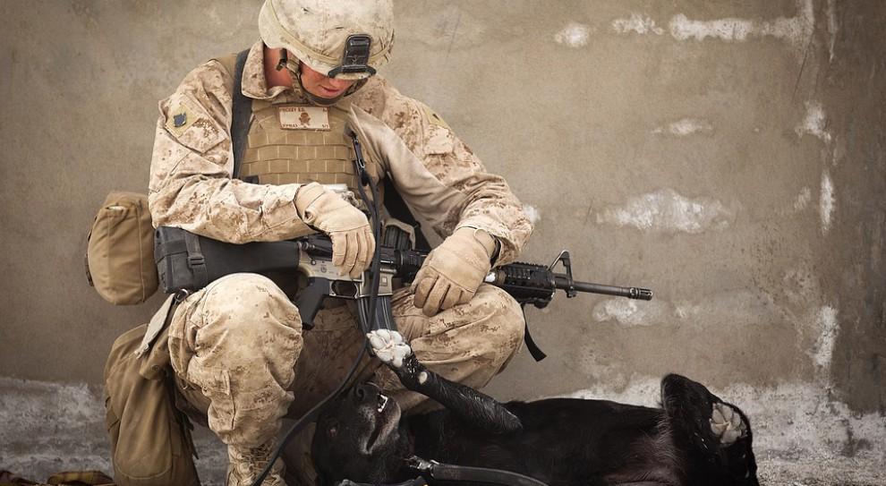 W Giżycku pobito żołnierza i pracownika armii USA