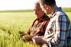 Rolników w Polsce coraz mniej