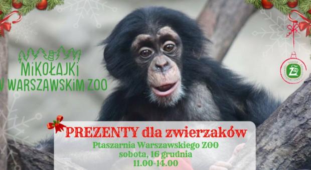 Warszawa: ZOO zatrudni pomocników Świętego Mikołaja do rozdawania prezentów zwierzętom