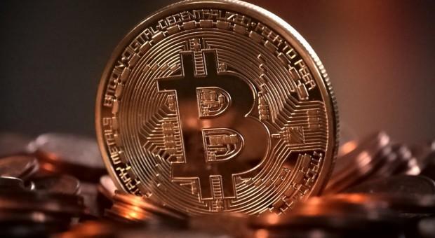 Praca: Coraz więcej firm szuka programisty blockchain