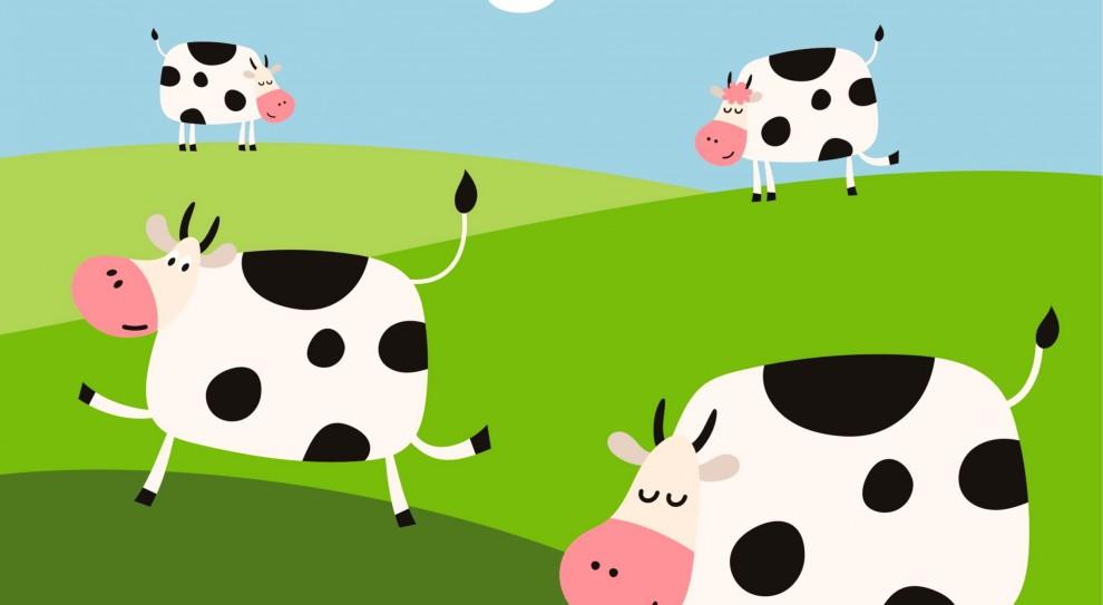 Praca w rolnictwie: Rolniku nie masz kiedy wydoić krów? Wynajmij dojarza