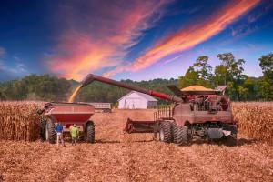 W Sejmie obywatelski projekt obniżający wiek emerytalny dla rolników
