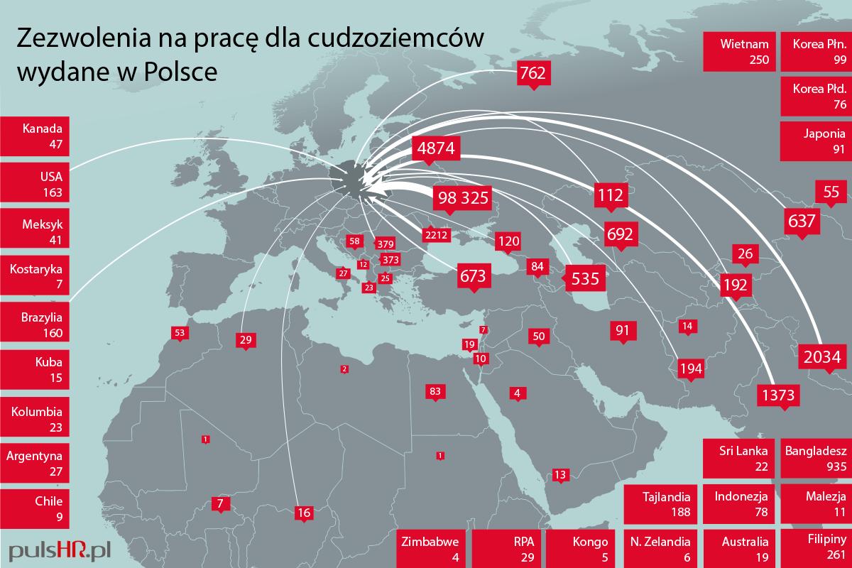 Dane Ministerstwa Rodziny, Pracy i Polityki Społecznej za pierwsze półrocze 2017 roku (grafika: Grupa PTWP/Sławomir Mróz)