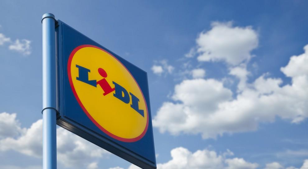 Praca w Lidlu: Firma szuka chętnych na letni staż