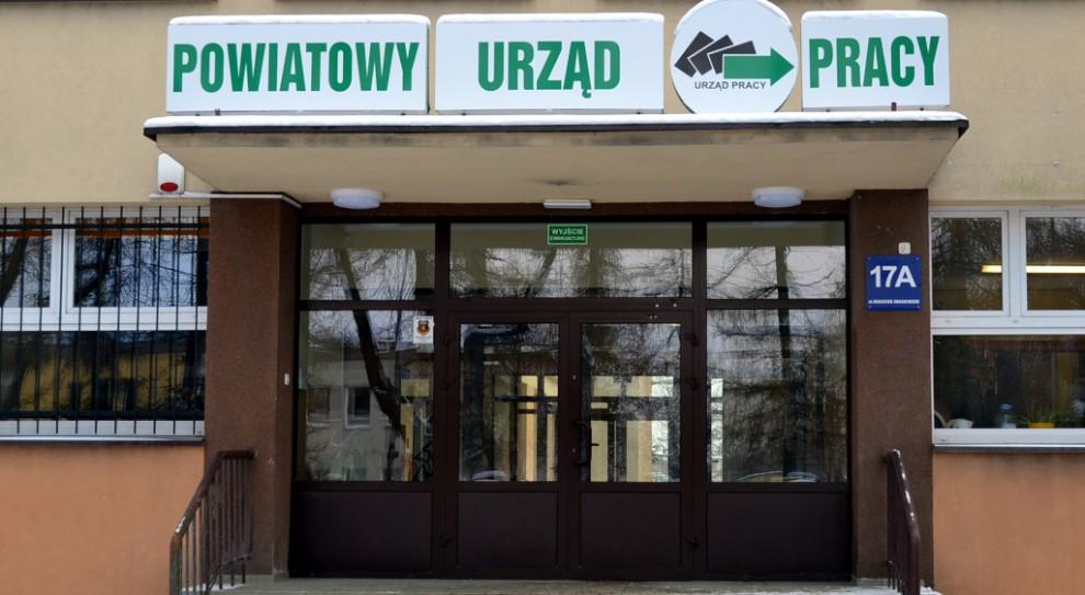 (fot. praca.gov.pl)