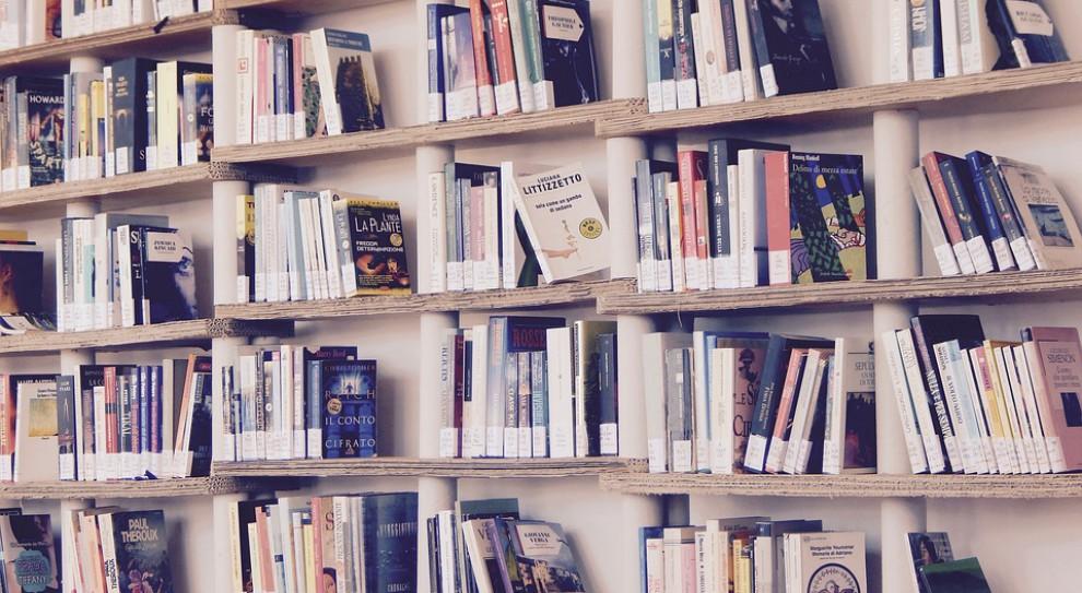 Ponad 1100 zarzutów dla byłej dyrektorki biblioteki