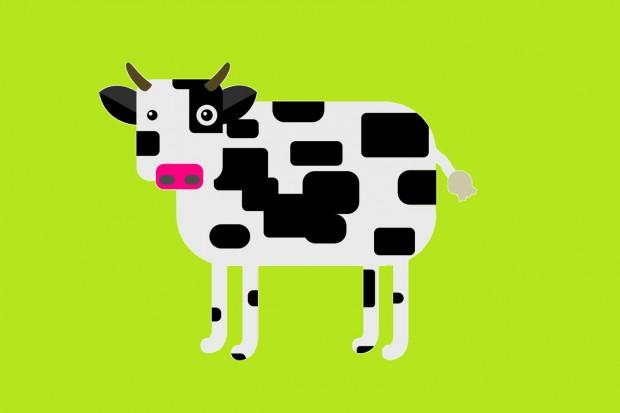 Wybrano najlepszych nauczycieli mleczarstwa