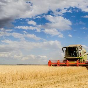 Jak zadbać o bezpieczeństwo podczas pracy w rolnictwie?