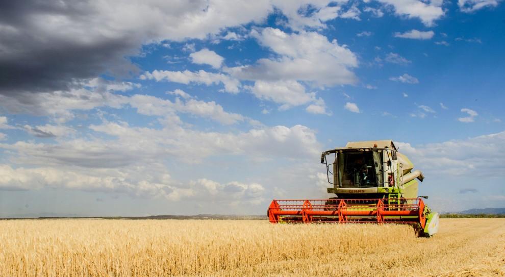 Praca na wsi, wypadki: Jak zadbać o bezpieczeństwo podczas prac polowych?