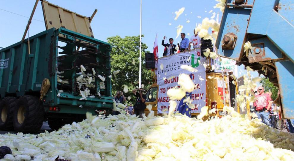 Strajk: Rolnicy mają dość. Rozrzucili kapustę pod urzędem z dedykacją dla ministra