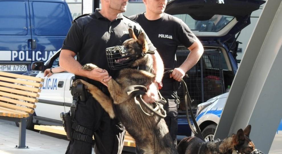 Białystok: Policja szkoliła psy na dworcu PKS