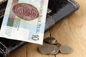 Pracownicze Plany Kapitałowe obejmą najuboższych?