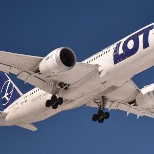 Kubicki: Związki zawodowe PLL LOT wywołują nieuzasadniony niepokój wśród pasażerów