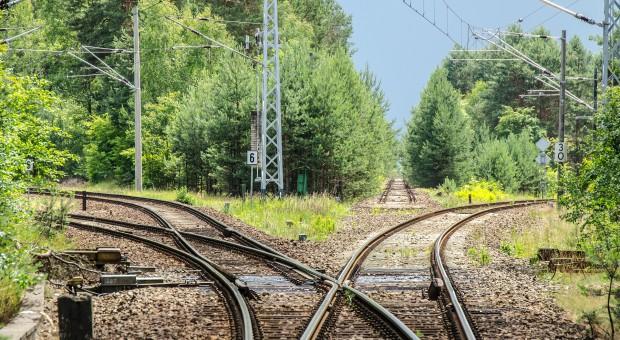 Portugalia: Paraliż na kolei. Maszyniści strajkują