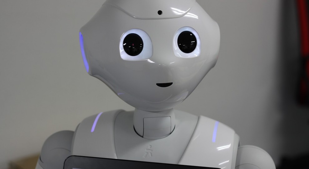 Roboty zastąpią urzędników. Pierwsze już wkrótce rozpoczną obsługę petentów