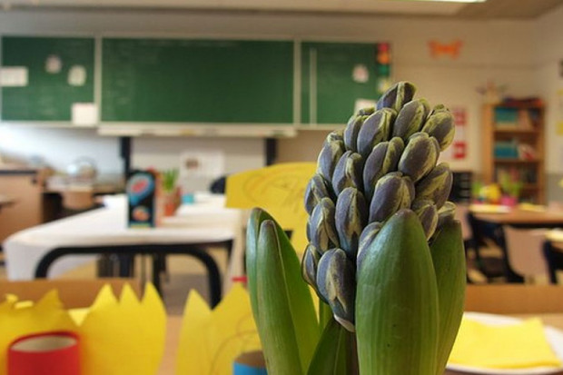 Ruszyła lawina zwolnień nauczycieli? ZNP: sytuacja jest alarmująca