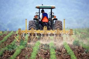 Godziwe zarobki rolników są priorytetem dla nowego ministra