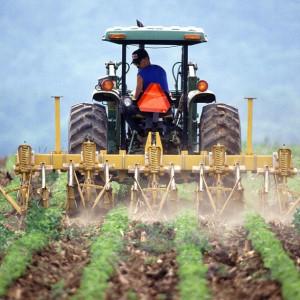 Zarobki rolników priorytetem dla ministra. Ale ci nie mają aż tak źle