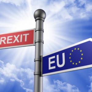 Brytyjczycy w obawie przed Brexitem zmieniają obywatelstwo
