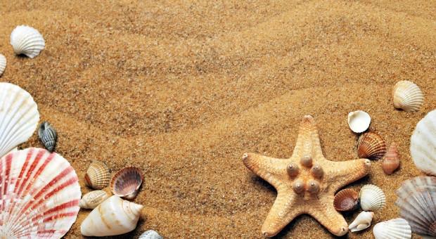 Aktywne wakacje, czyli jak zwiększyć swoje szanse na rynku pracy