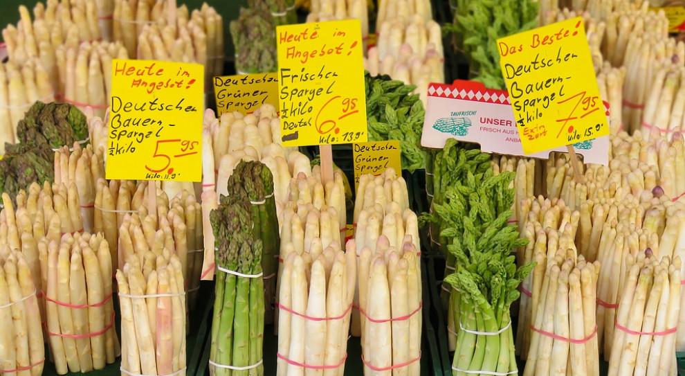 Norwedzy i Niemcy skarżą się na brak polskich pracowników do zbierania owoców