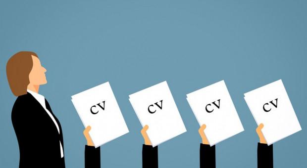 Szukam pracy: W tym obszarze HR-owcy nie mają problemów rekrutacyjnych