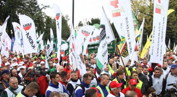 Strajki w Polsce w 2017 r. Najwięcej protestowali... nauczyciele