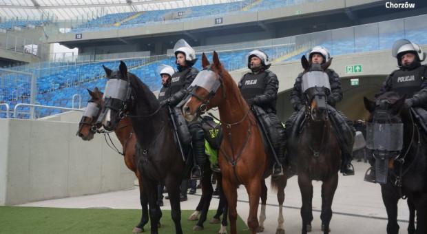Policja rekrutuje do zespołu konnego. Kandydaci powinni ... kochać zwierzęta