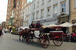Prokuratura sprawdzi warunki pracy koni dorożkarskich w Krakowie