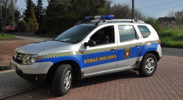 Straż Miejska w Katowicach szuka kandydatów do pracy