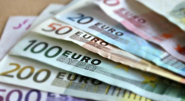 Zaskakujący wynik sondażu. Polskie firmy chcą wprowadzenia euro